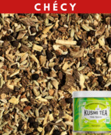 INFUSION ONLY SPICES BIO  KUSMI TEA